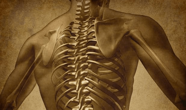 Everything you know about back pain is wrong